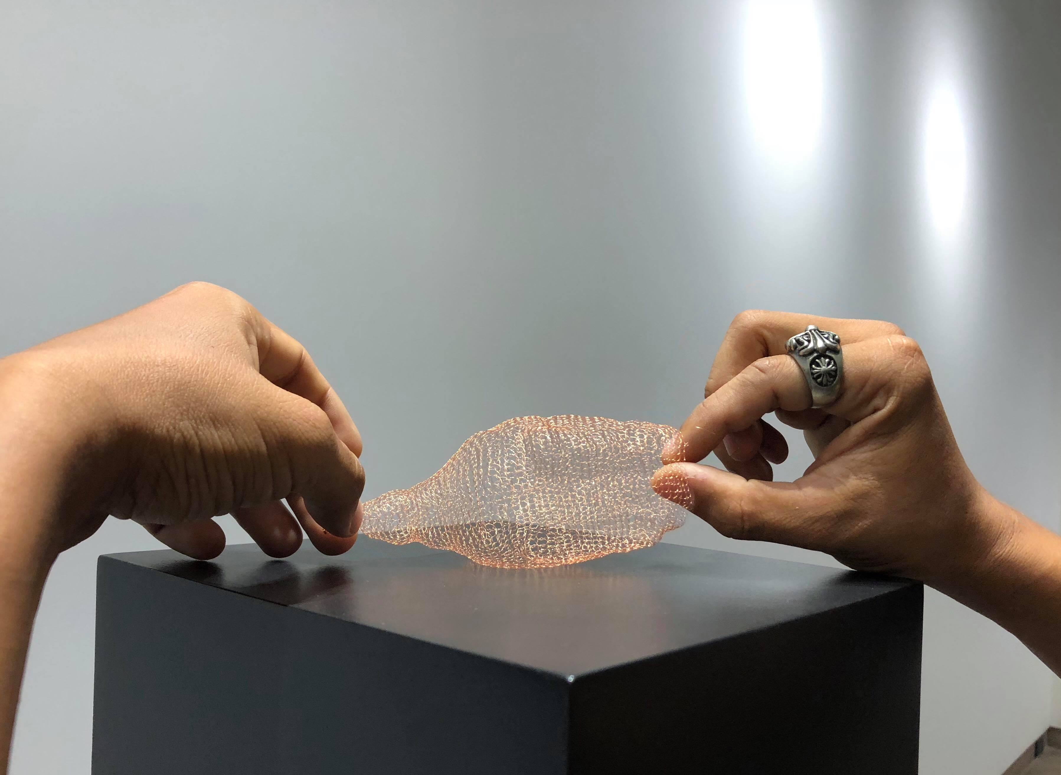 Teerapon Srisung ศรัทธา 01, 2018, ผลงาน 5 x 15 x 9 cm. ฐาน-กระจก 50 x 50 x 170 cm., ถักเส้นใยโลหะ